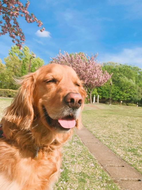 ニッコリ微笑む、むくくん(画像提供:minamiさん)